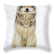A Smile For You.. Throw Pillow