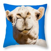 A Smiling Camel Throw Pillow