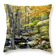 A Smokey Mountain Stream  Throw Pillow