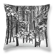 A Snowy Day Bw Throw Pillow