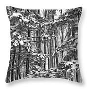 A Snowy Day Sc Throw Pillow