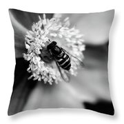 A Soft Place To Rest Throw Pillow