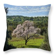 A Solitary Almond Tree Throw Pillow