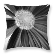 A Solo Daisy In Negative Throw Pillow