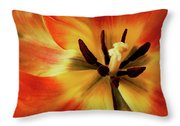 A Song From The Heart Throw Pillow
