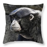 A Song Is Coming Throw Pillow