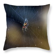 A Spider And Her Web Throw Pillow
