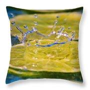 A Splash Of Lime Throw Pillow