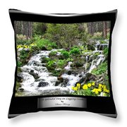 A Splendid Day On Logging Creek Throw Pillow
