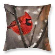 A Spot Of Color Throw Pillow