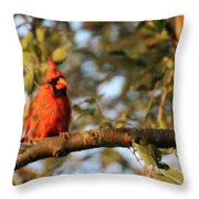 A Spot Of Red In The Trees Throw Pillow