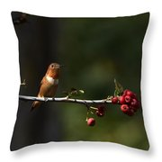 A Spot Of Sunlight Throw Pillow
