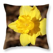 A Spring Blessing Throw Pillow