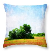 A Spring Day In Texas Throw Pillow