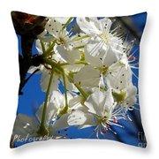 A Spring Delight Throw Pillow
