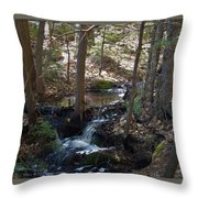 A Spring Moment Throw Pillow