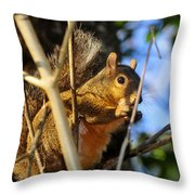 A Squirrel's Feist Throw Pillow
