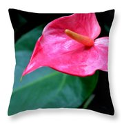 A Stand Alone Stand Out Throw Pillow