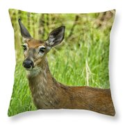 A Stardust Child Of Woodstock No. 2 Throw Pillow