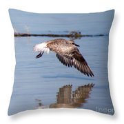 A Startled Sanderling By Darrell Hutto Throw Pillow