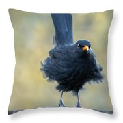 A Stiff Breeze Throw Pillow
