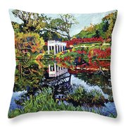 A Still Lake Throw Pillow