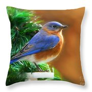 A Still Moment Throw Pillow