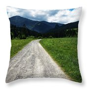A Stone Path Through The Countryside Into The Forest Throw Pillow