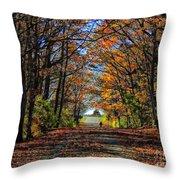 A Stroll Through Autumn Colors Throw Pillow