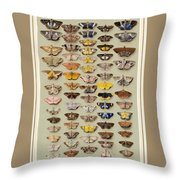 A Study Of Moths Characteristic Of Indo Throw Pillow