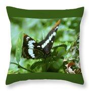 A Summer Butterfly  Throw Pillow