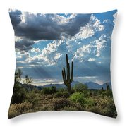 A Summer Day In The Sonoran  Throw Pillow