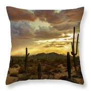A Summer Evening In The Sonoran  Throw Pillow