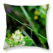 A Summer Of Dragonfly Kisses Throw Pillow