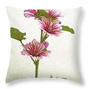 A Summer Splash Of Color Throw Pillow