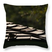 A Summers Day Throw Pillow