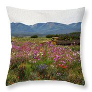 A Sunday Afternoon Drive Throw Pillow