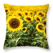 A Sunflower Plantation In Summer In South Dakota Throw Pillow