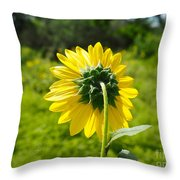 A Sunflower's Backside Throw Pillow