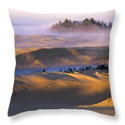 A Sunny Morning Throw Pillow