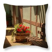 A Sunny Spot Throw Pillow