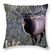 A Surly Attitude Throw Pillow
