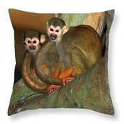A Tale Of Two Tails Throw Pillow