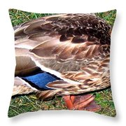A Tame Crow Throw Pillow