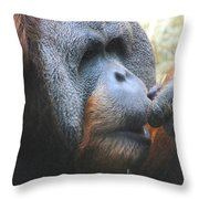 A Tang Profile Throw Pillow