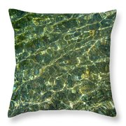 A Tapestry Of Light In The River Throw Pillow