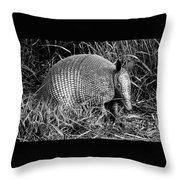 A Texas Critter Throw Pillow