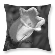 A Thing Of Beauty In Black And White Throw Pillow