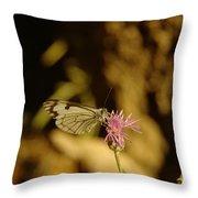 A Tilting Butterfly  Throw Pillow