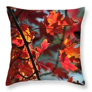 A Time For Every Season IIi In Watercolor Throw Pillow